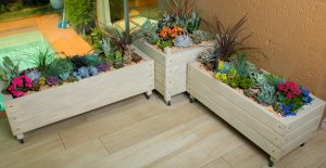PatioScapes-container-gardens
