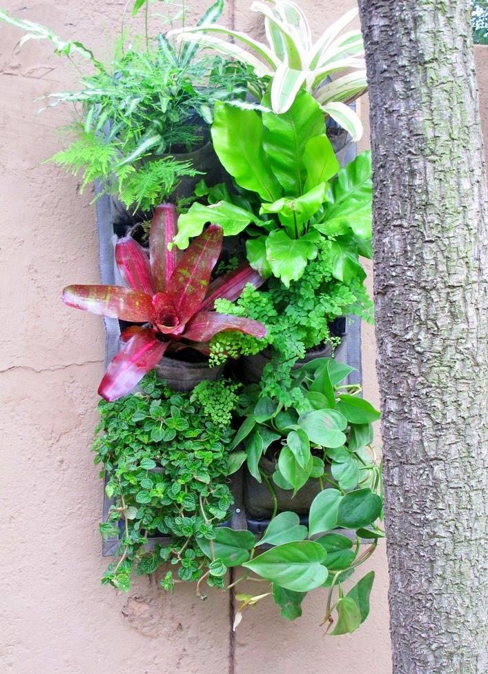 Vertical-garden-tropical-12