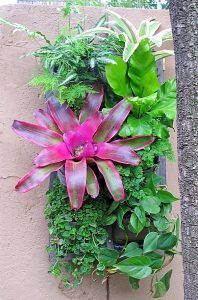 Vertical-garden-tropical-7