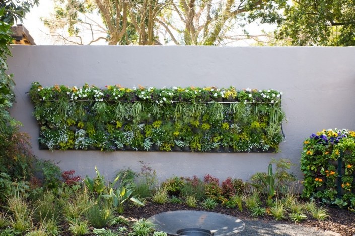 Window box vertical garden- Garden World