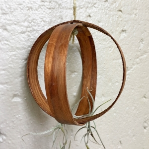 Air-plant-holders-cherry-wood-no-plant
